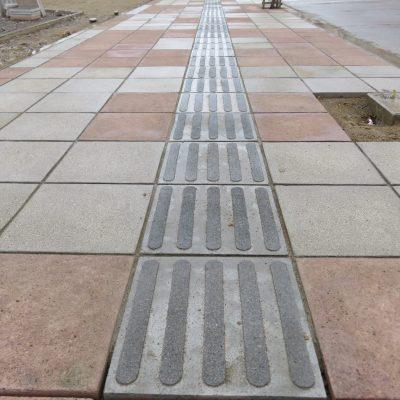 Avenida Civica_3