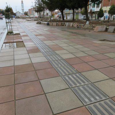Avenida_Civica_5